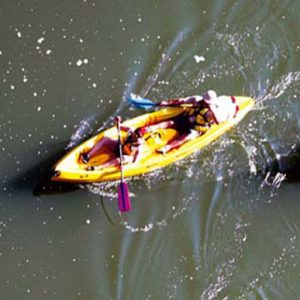 Une sortie canoë-kayak aux portes d'Albi