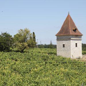 Pigeonnier d'andillac. Un circuit de découverte des pigeonniers est disponible en Office de Tourisme.